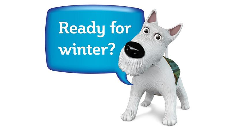 Ready for Winter Westie