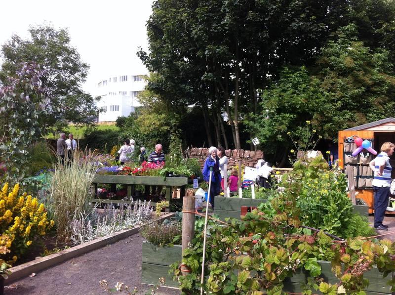 Ninewells community garden open day