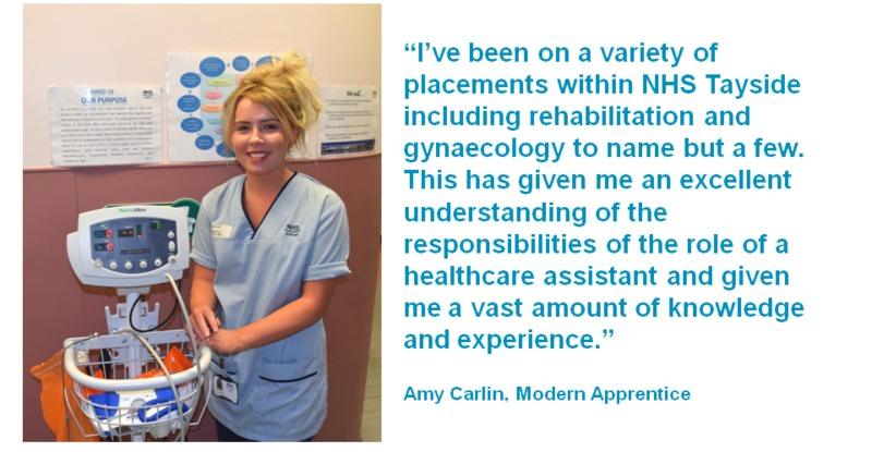 Amy Carlin, Modern Apprentice
