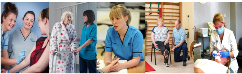 healthcare assistants, nurses, physiotherapists and dentists at work