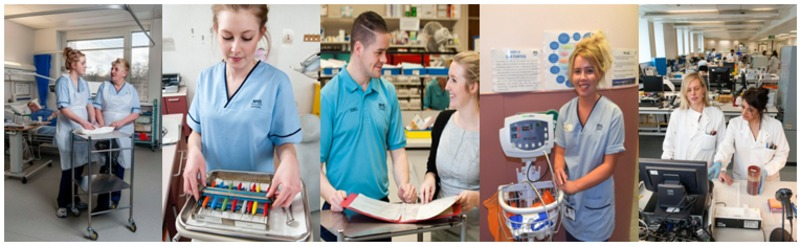 Apprentices working in a variety of roles